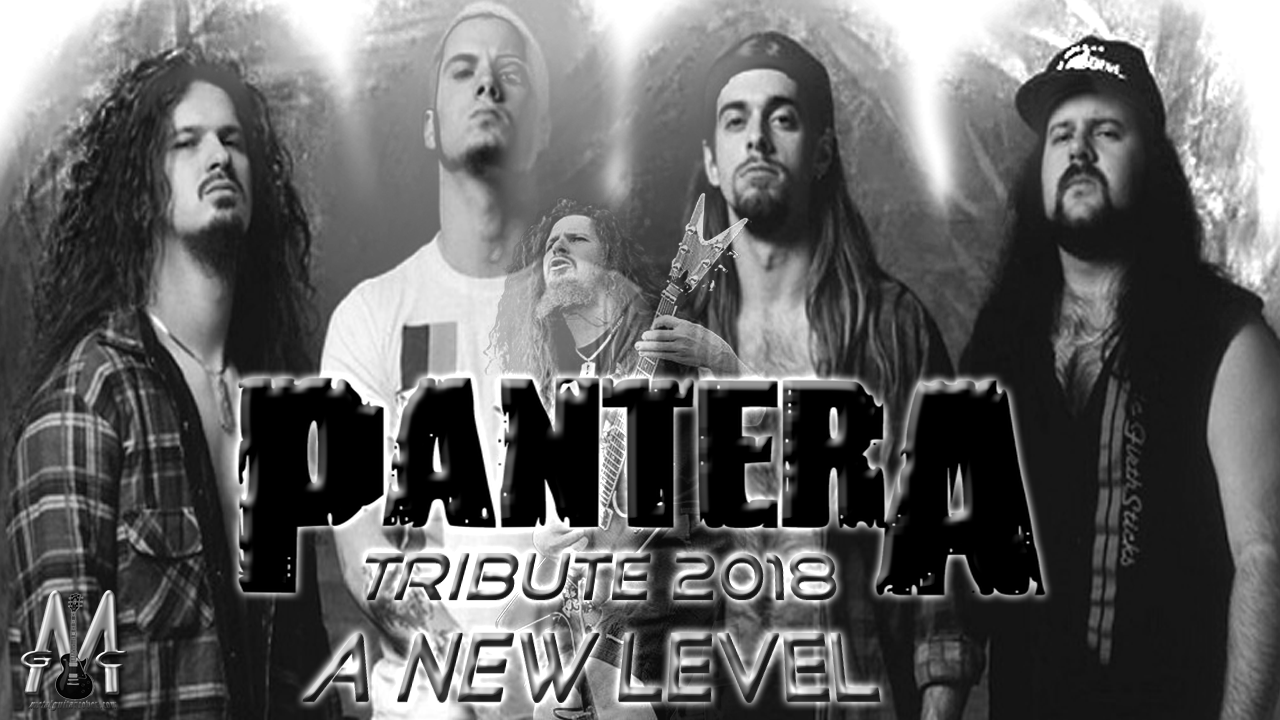 Pantera (Vinnie Paul And Dimebag Darrell) | A New Level | Metal Guitar Cover